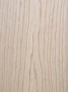 Body Blank, US Swamp Ash, 1-TEILIG